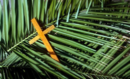 Cross on Palms